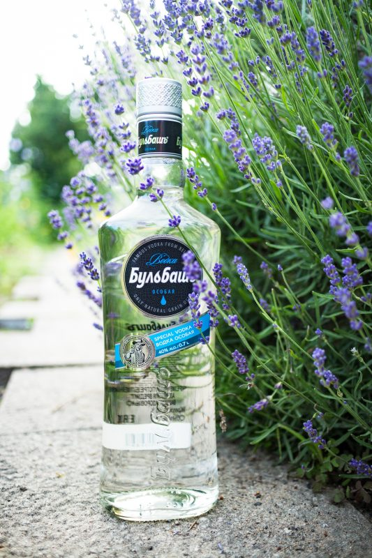wodka-bulbasch-frontal